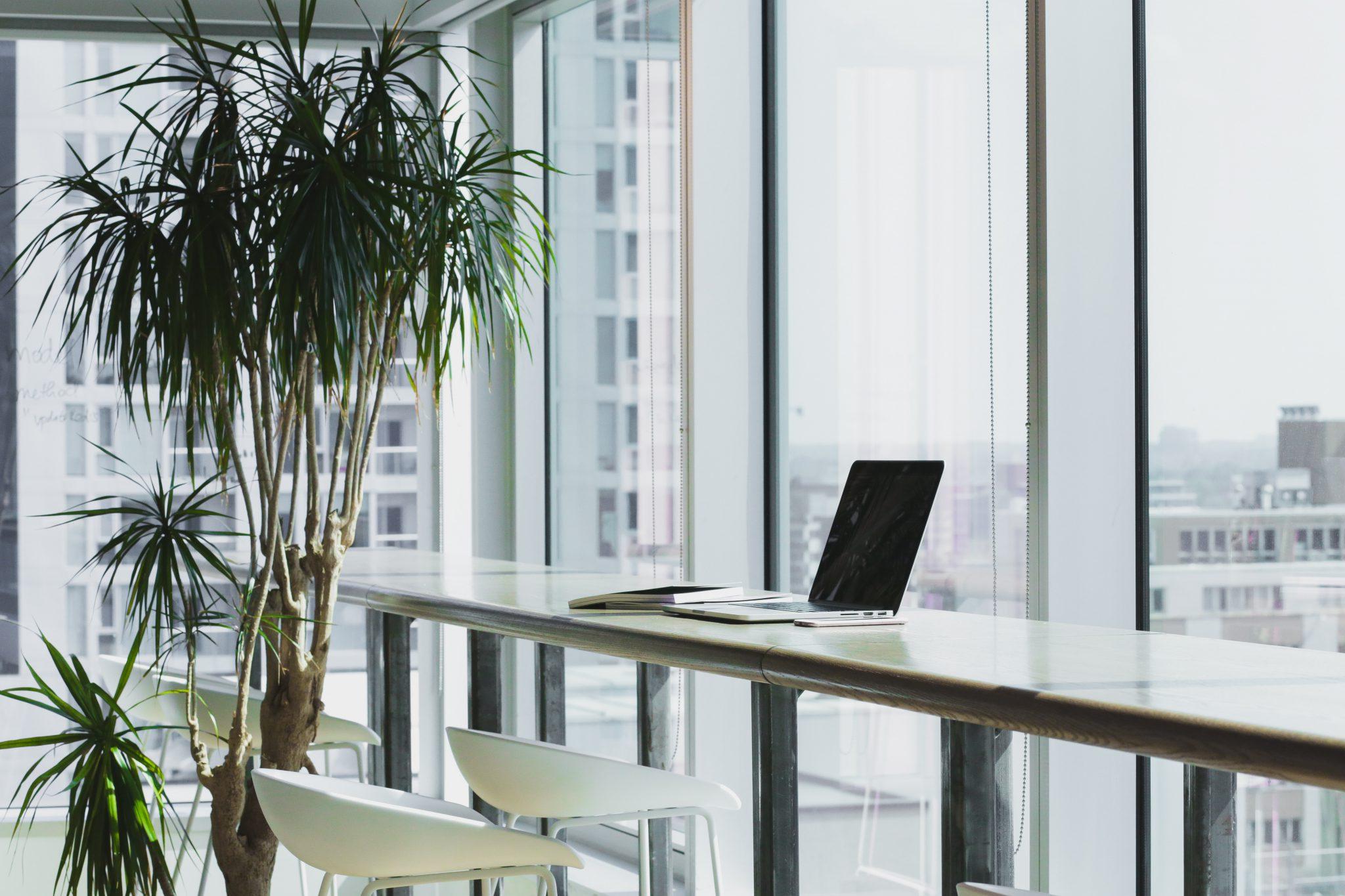就活の業界研究に役立てよう!IT業界の詳しい仕事内容を徹底解説